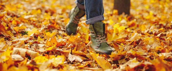 Fall Activities in Flower Mound for the Whole Family at Flower Mound Towne Crossing